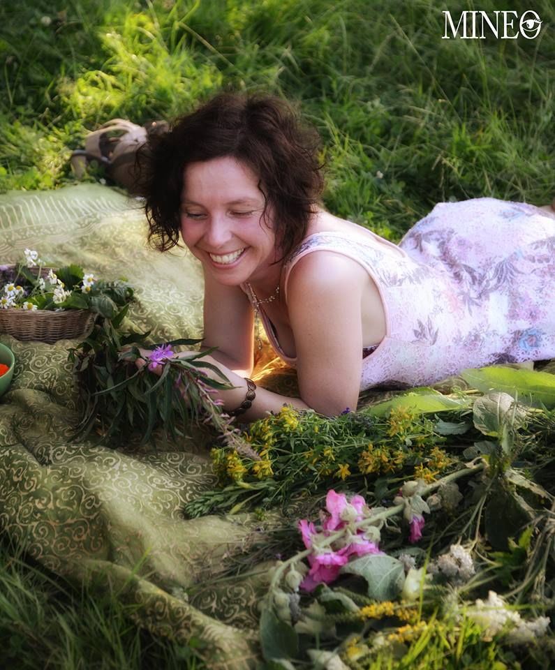 Katja Friedrich frohleben Weidenroeschen Wildkraeuter