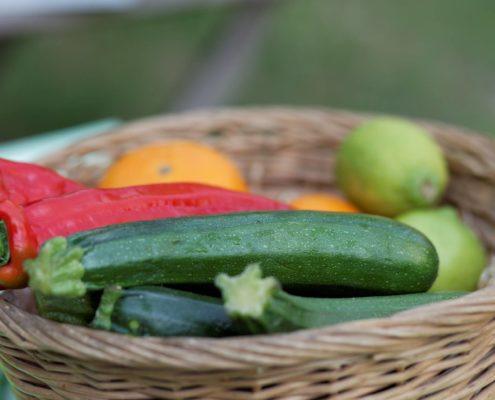 Gemuesekorb froh-leben Gourmet-Abend Ipanema