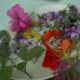 Wildkraeuterteller froh-leben Gourmet-Abend Ipanema