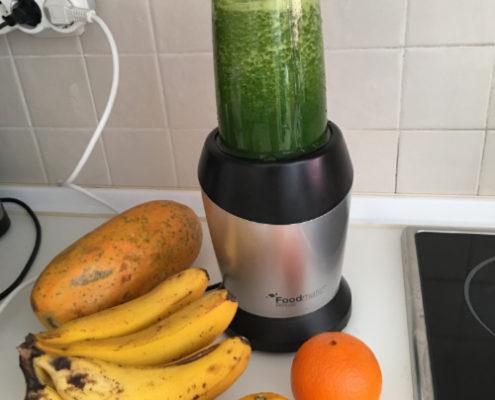 Idealer Reisemixer - Foodmatic PM 1000 - froh-leben